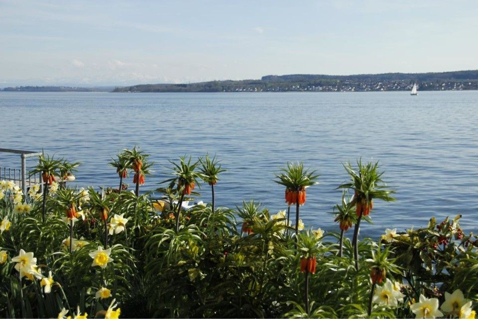04 Bodensee